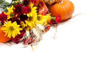 Autumn floral arrangement on white Stock Photography