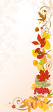 Autumn floral background. Stock Photo