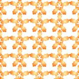 Autumn floral background. Autumn flowers on a white background Vector Illustration