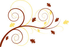 Autumn floral background. With spirals and oak leaves royalty free illustration