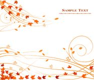 Autumn floral background design - art stock decoration beauty royalty free illustration