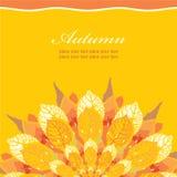 Autumn floral card Stock Photos