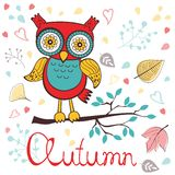 Autumn floral card with cute owl Stock Photography