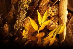 Autumn Floral Composition Arkivfoton