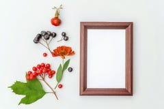Autumn Floral Composition Fleurs colorées verticales de dogrose de feuilles de baies de sorbe de chokeberry de maquette de cadre  images stock