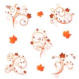 Autumn floral design Stock Photography
