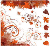Autumn floral elements Royalty Free Stock Image