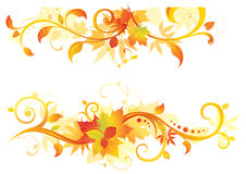 Autumn floral elements. Floral elements of your design Stock Image
