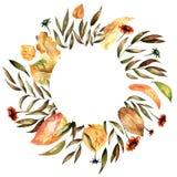 Autumn Floral Frame stock abbildung