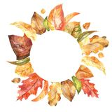 Autumn Floral Frame lizenzfreie abbildung