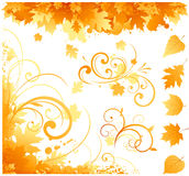 Autumn floral ornament Royalty Free Stock Photography