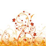Autumn floral ornament Royalty Free Stock Photo