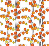 Autumn floral seamless pattern. Floral seamless pattern background with abstract ornament winter cherry Stock Photography