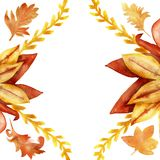 Autumn floral watercolor frame Burgundy, red and yellow leaves and branches, on white background. Hand painted illustration of a large yellow-orange Bush royalty free illustration