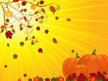 Autumn floruish and pumpkins landscape Stock Photos
