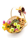 Autumn flower arrangement Royalty Free Stock Images