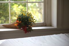 Autumn flower bouquet on interior window sill royalty free stock photo