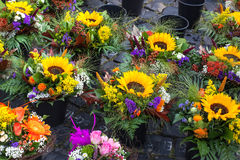 Autumn flower bouquets on farmer market Stock Photo