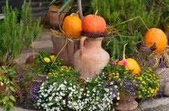 Autumn flower garden decoration, Lower Austria. Austria Stock Photography