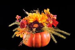 Autumn Flowers Stock Photography