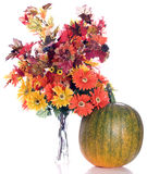 Autumn Flowers. Artificial fall flowers and leaves shot next to a real pumpkin that is slowly turning orange, isolated against a white background Stock Images