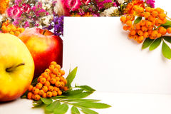 Autumn flowers. Berries and blank invitation card Stock Images