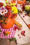Autumn flowers Royalty Free Stock Images