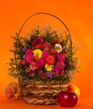Autumn flowers Royalty Free Stock Photo