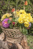 Autumn flowers. Basket full of autumn flowers and leaves Royalty Free Stock Image