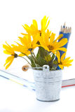 Autumn flowers with book and pencils Royalty Free Stock Images