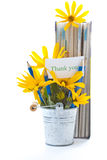Autumn flowers with book and pencils Royalty Free Stock Photography