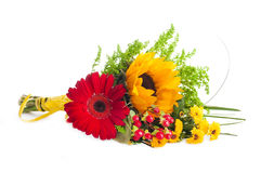 Autumn flowers, bouquet from gerber Stock Photos