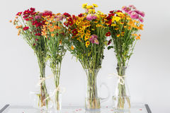 Autumn flowers bouquets Stock Image