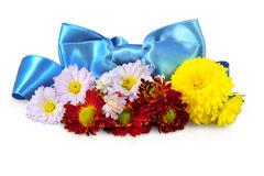 Autumn flowers with a bow Stock Images