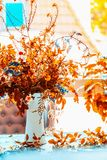 Autumn flowers bunch in vase on blue table at window with sunshine. Cozy home interior decoration. Fall still life, front view stock photography