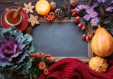 Autumn flowers with cup of tea. And thanksgiving decor, place for text royalty free stock photo