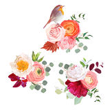 Autumn flowers mix and cute robin bird vector design bouquets. Peachy rose, white and burgundy red peony, orange ranunculus, pink carnation, autumn leaves Stock Photos