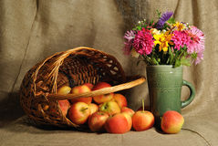 The autumn flowers and red apples Stock Photos