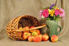 The autumn flowers and red apples Stock Image