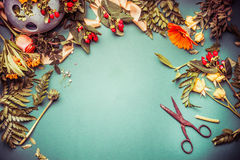 Autumn flowers with scissors on florist workspace for arrangements and decor, top view Stock Photography