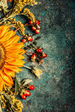 Autumn flowers setting with sunflowers  on dark rustic background, top view. Border Royalty Free Stock Images