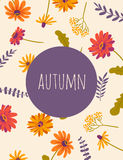Autumn flowers. Vector floral background. Autumn. Hand drawn illustration with gerberas and herbs. Vector floral background with beautiful flowers Royalty Free Stock Photos