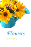 Autumn flowers in watering can Stock Photo