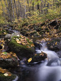 Autumn flowing river Royalty Free Stock Photo