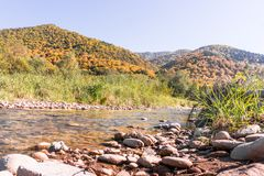 Autumn flowing river beside forest hills stock photo
