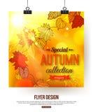 Autumn flyer with shining foliage. Photorealistic Stock Photos