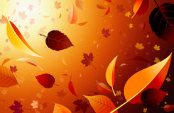 Autumn flying leaves composition. Royalty Free Stock Image