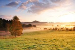 Autumn fog royalty free stock image