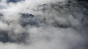 Autumn fog floats over the landscape among the trees. Czech Republic stock video