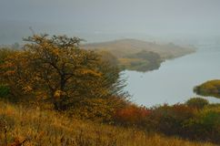 Autumn fog Royalty Free Stock Photography